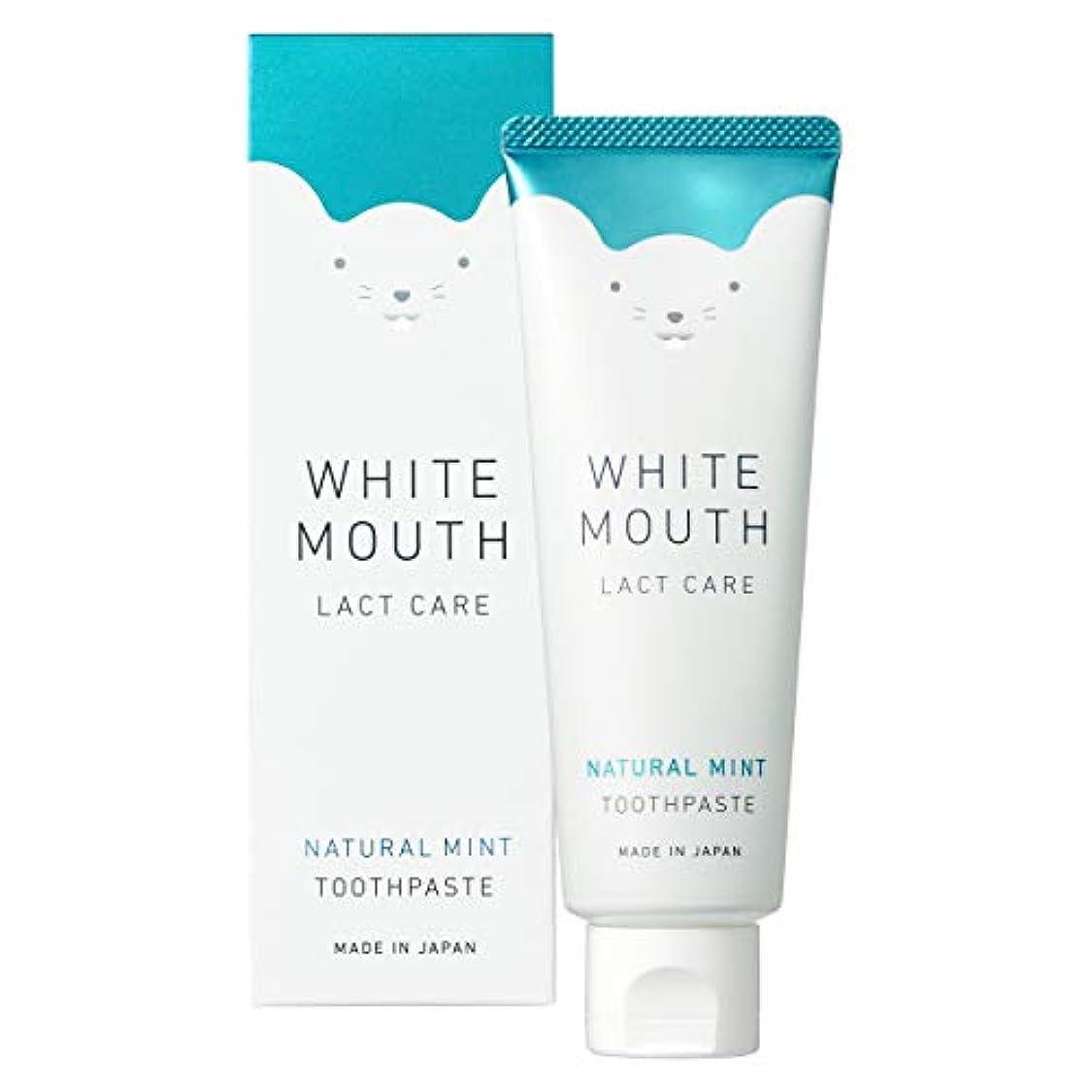 反動なしでリーチWHITE MOUTH ホワイトマウス デンタルクレンジング 歯磨き粉 ナチュラルミント100g