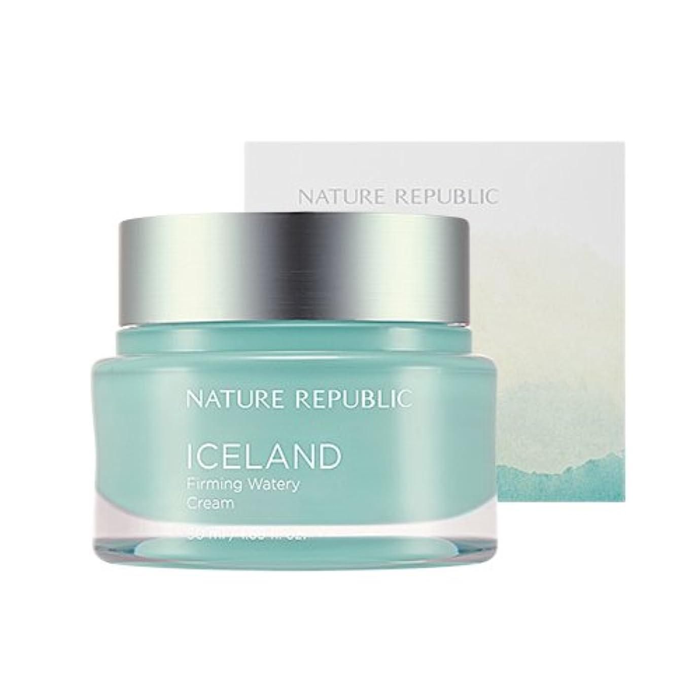 小さい無限臭いNature Republic Iceland Firming Watery Cream 50ml / ネイチャーリパブリック アイスファーミング水分クリーム 50ml [並行輸入品]