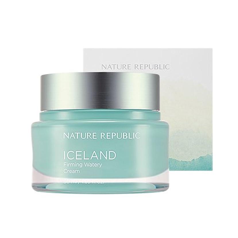 戦艦ネット王位Nature Republic Iceland Firming Watery Cream 50ml / ネイチャーリパブリック アイスファーミング水分クリーム 50ml [並行輸入品]