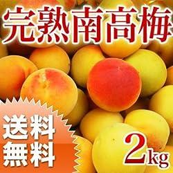 南高梅 完熟 2L~3L 南高梅 梅干し用 生梅 完熟梅 大分産 2kg