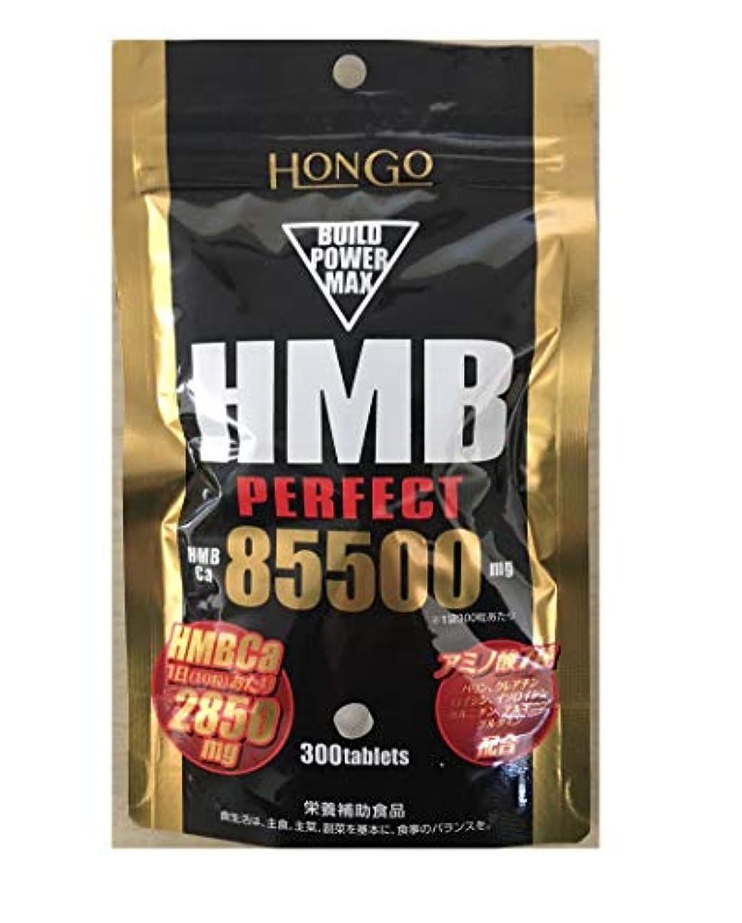 そうでなければオデュッセウス膨らませるHongo HMB PERFECT HMB パーフェクト 85500 (350mg×300粒) HMBカルシウム 栄養補助食品