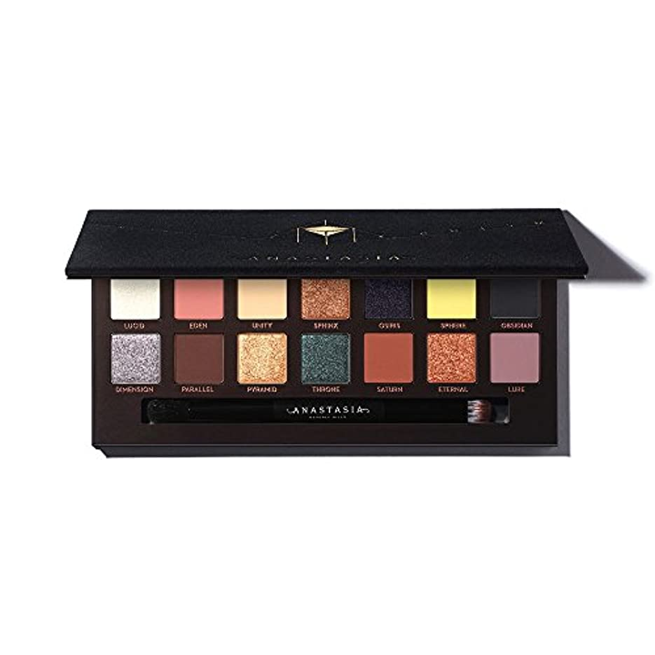 ポインタステレオタイプ緯度ANASTASIA BEVERLY HILLS Prism Eyeshadow Palette