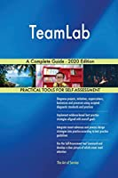 TeamLab A Complete Guide - 2020 Edition