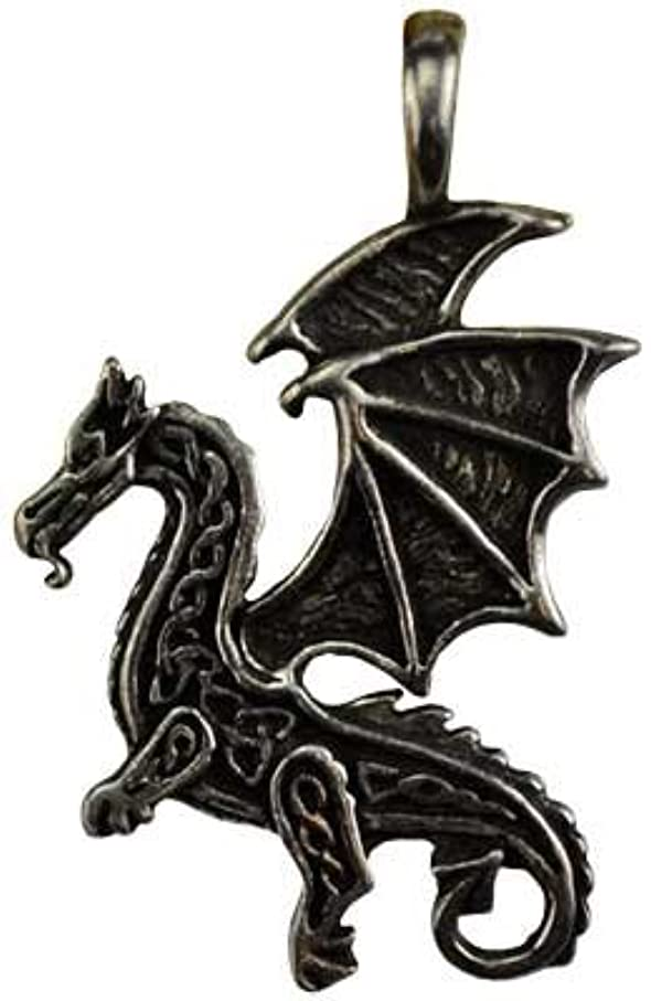 こどもの宮殿アプライアンス一般的に言えばケルトFlying Dragon保護アミュレットネックレス