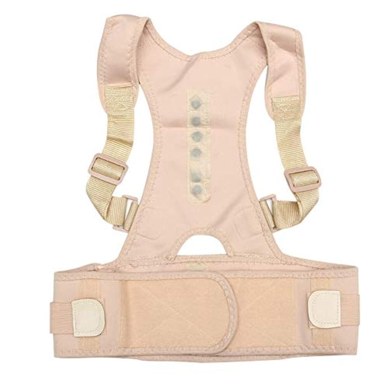 踊り子暖かく崇拝するお座り姿勢コレクター調整可能磁気シェイプボディショルダーブレースベルトの男性と女性戻る椎骨正しいセラピーすべての市 (Color : B, Size : S)