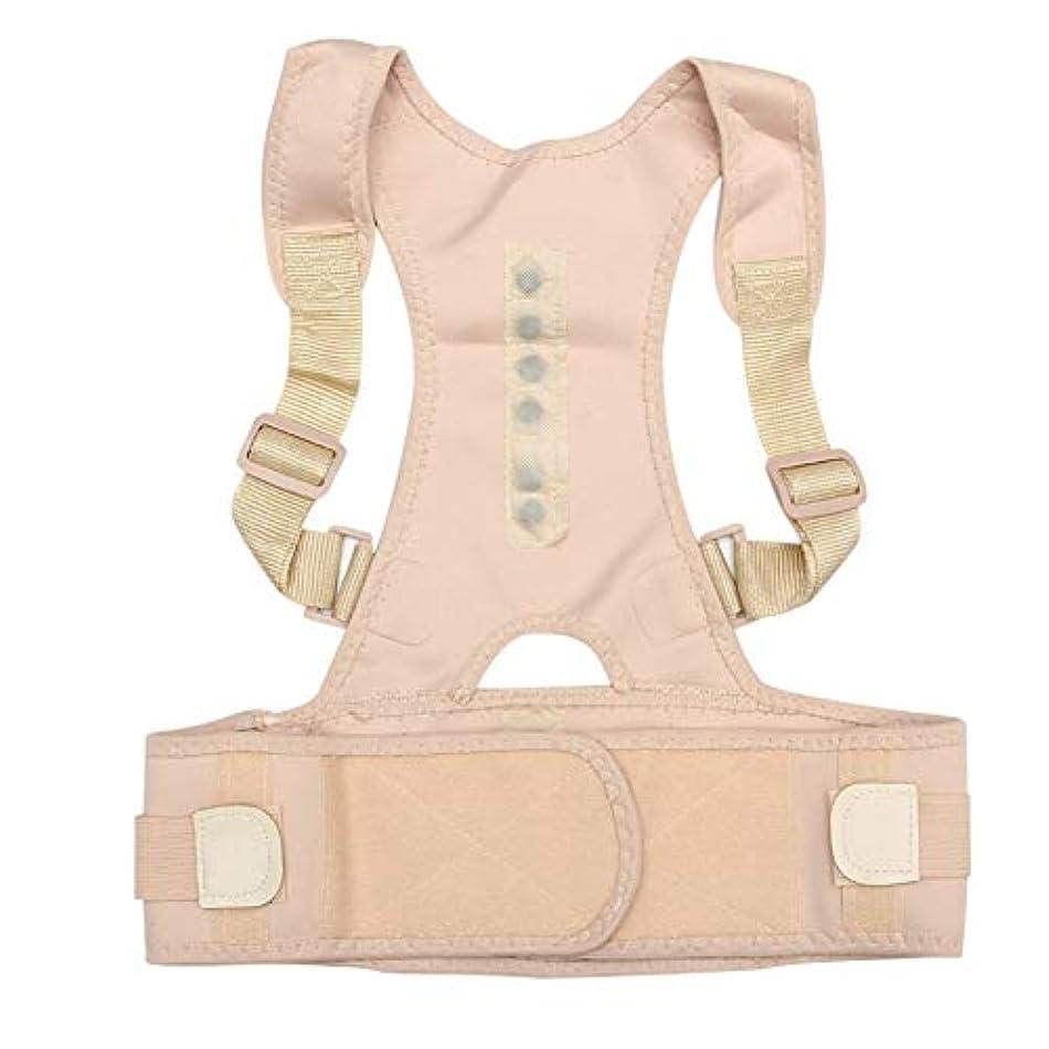 情熱妊娠した水星お座り姿勢コレクター調整可能磁気シェイプボディショルダーブレースベルトの男性と女性戻る椎骨正しいセラピーすべての市 (Color : B, Size : S)