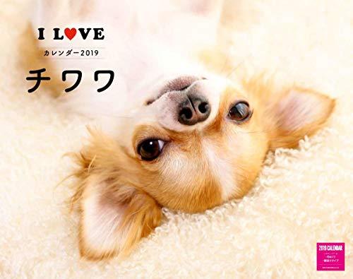 カレンダー2019 壁掛け I LOVE チワワカレンダー(ネコ・パブリッシング) ([カレンダー])