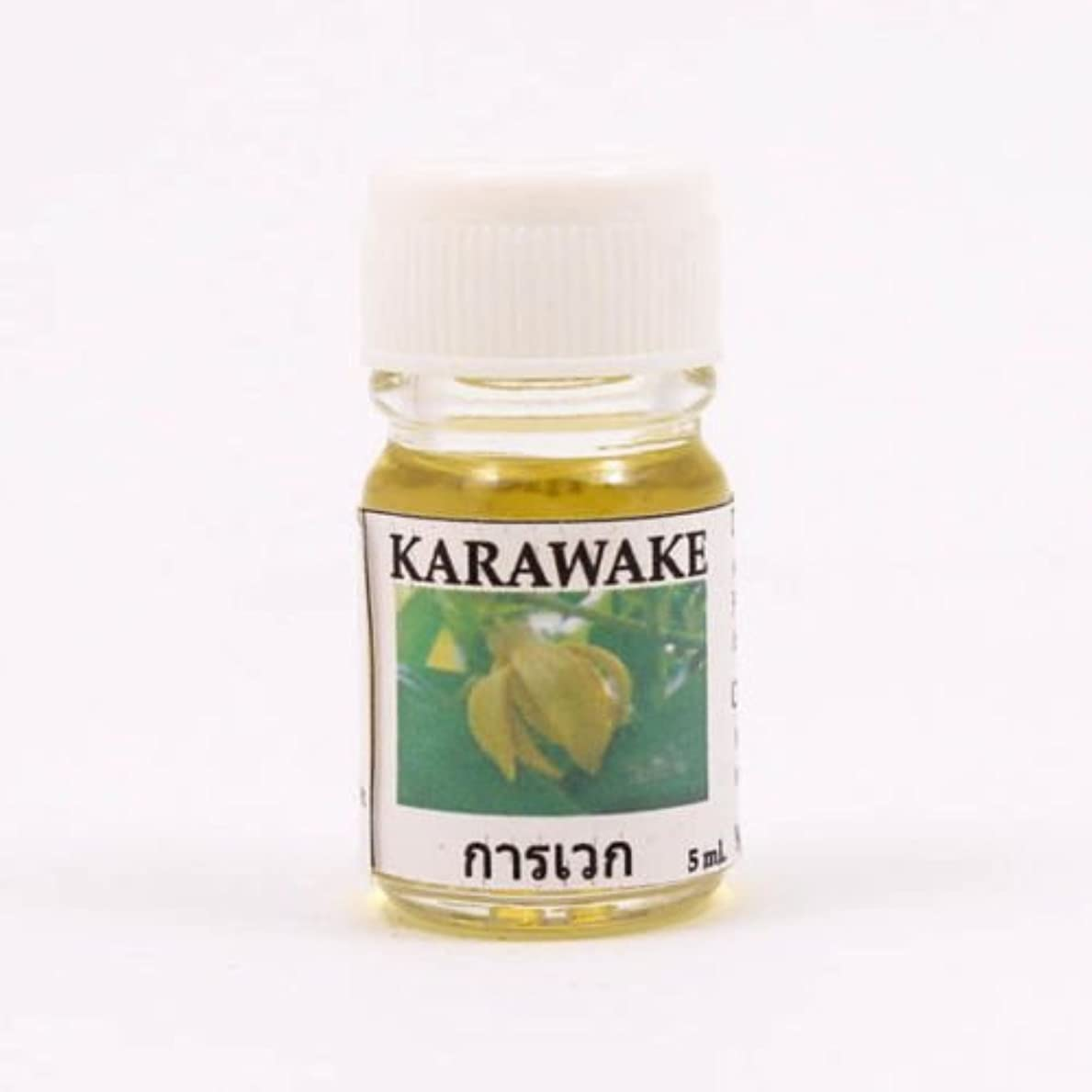 回転するショッキング道徳6X Karawake Aroma Fragrance Essential Oil 5ML. cc Diffuser Burner Therapy
