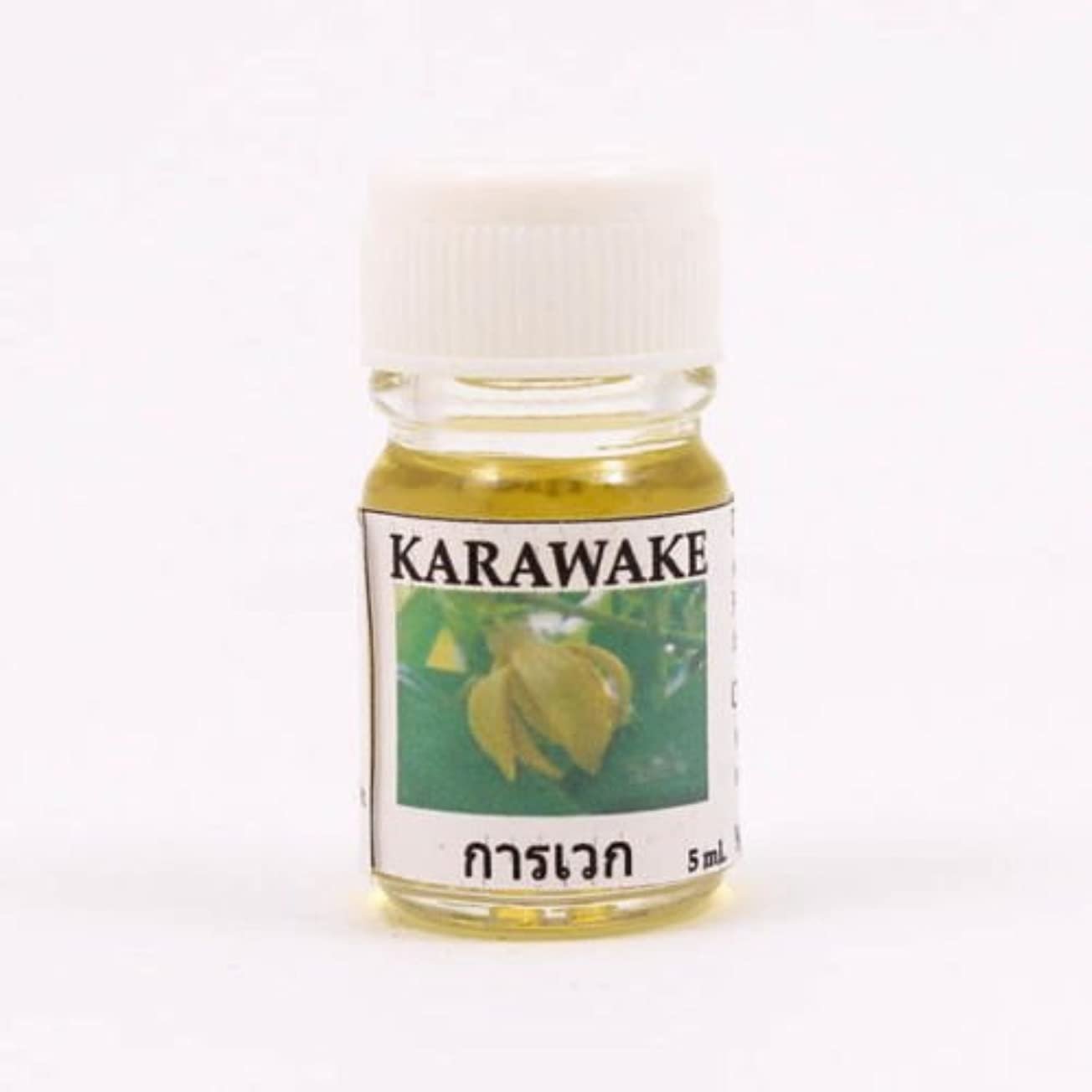 浸したブリーフケース報復する6X Karawake Aroma Fragrance Essential Oil 5ML. cc Diffuser Burner Therapy