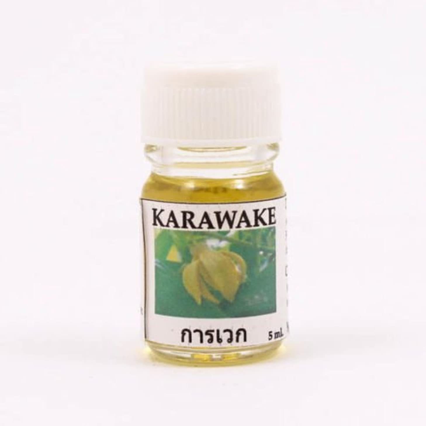 順応性乗り出すタイトル6X Karawake Aroma Fragrance Essential Oil 5ML. cc Diffuser Burner Therapy