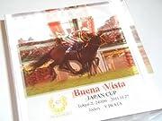競馬 アクリル置物 ブエナビスタ ジャパンカップ 2011 優勝記念 ヴィクトワールピサ エイシンフラッシュ GⅠ6勝です。