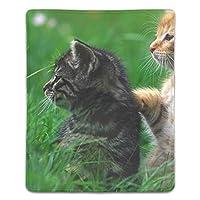 マウスパッド 子猫カップル草ケア注意 レーザー&光学マウス対応 防水/洗える/滑り止め サイズ:18 x 22 x 0.3 cm