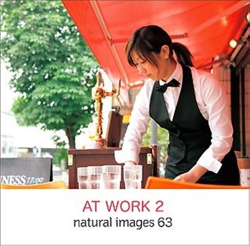 ほこり調停する衝動naturalimages Vol.63 AT WORK2