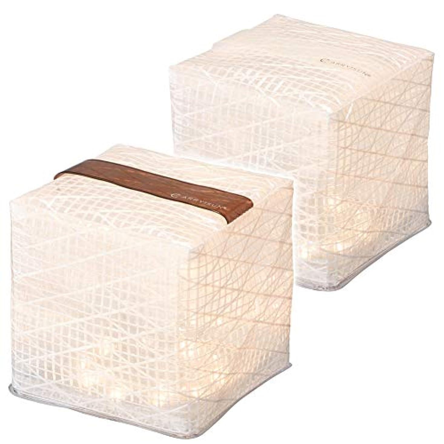 床を掃除する洗練されたボックス【2個セット】 CARRY THE SUN キャリー?ザ?サン/ミディアムサイズ/ウォームライト(暖色ライト)