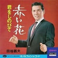 赤い花 (MEG-CD)