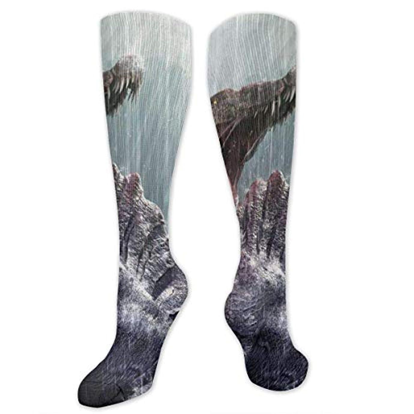 賢い呼び起こす気候靴下,ストッキング,野生のジョーカー,実際,秋の本質,冬必須,サマーウェア&RBXAA Spinosaurus Coming Interest Socks Women's Winter Cotton Long Tube...
