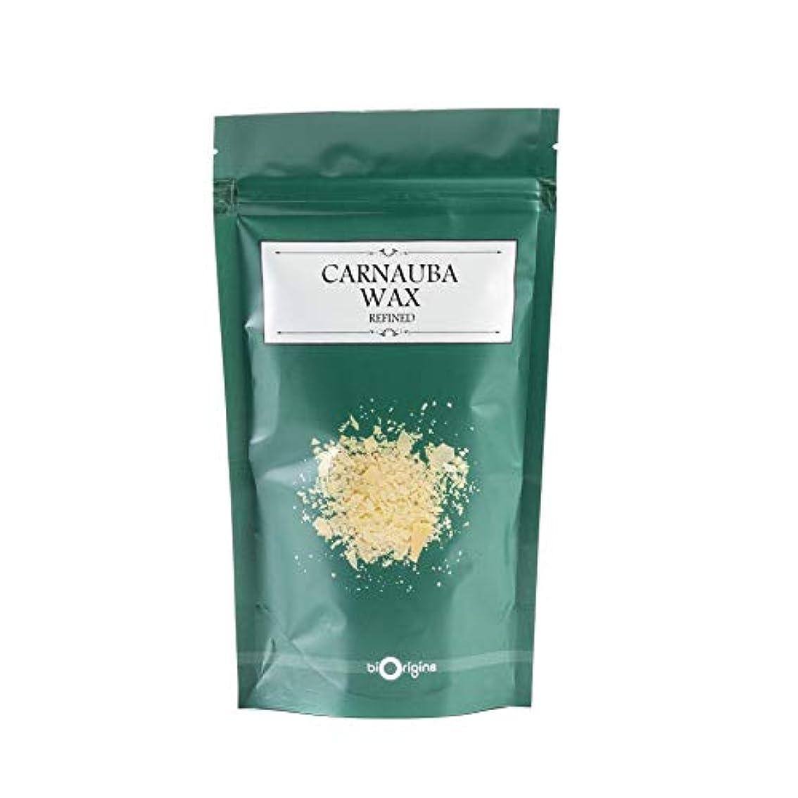 毛細血管暫定の行商Carnauba Wax T1-100g