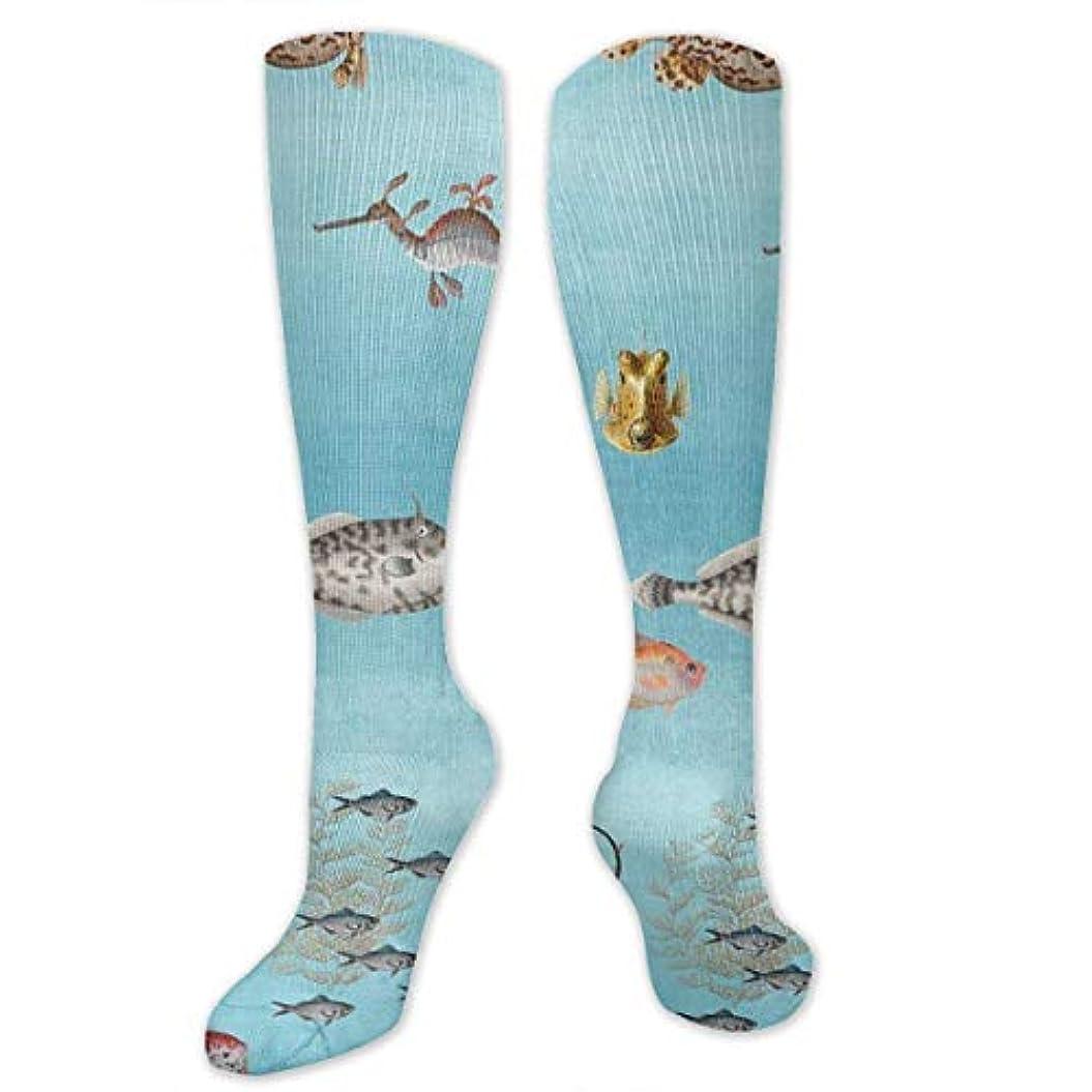 急いで奴隷囲い靴下,ストッキング,野生のジョーカー,実際,秋の本質,冬必須,サマーウェア&RBXAA Curious Fish Socks Women's Winter Cotton Long Tube Socks Knee High...