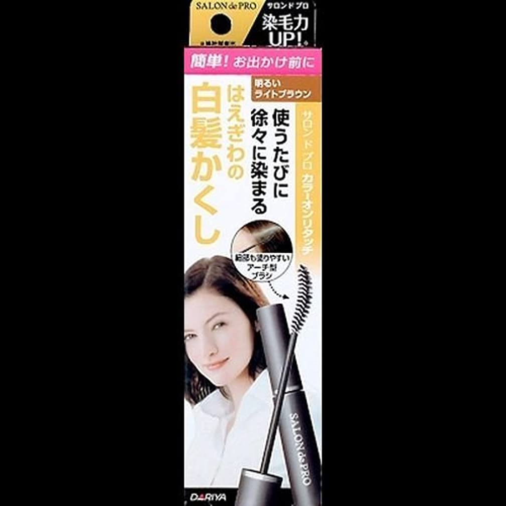 容器とは異なりロータリー【まとめ買い】サロンドプロ カラーオンリタッチ 白髪かくしEX 明るいライトブラウン 15ml ×2セット