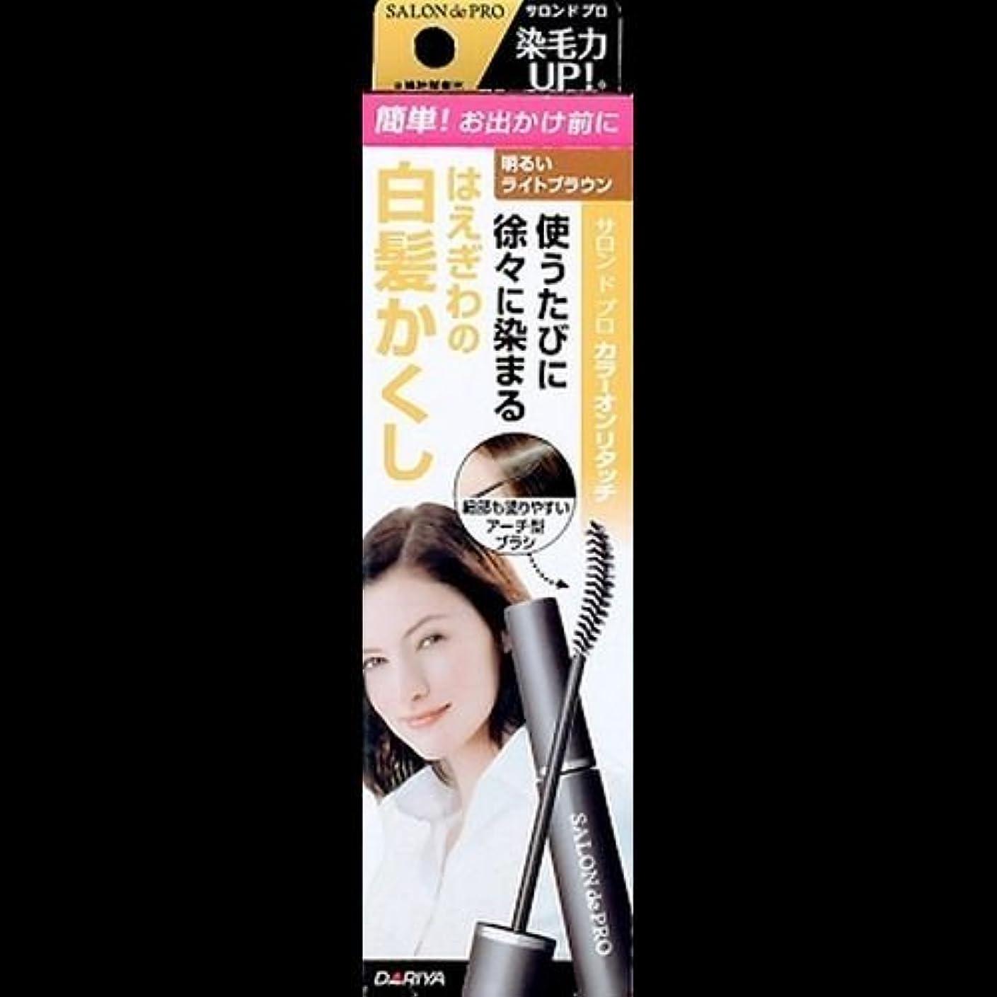 ホット重荷の中で【まとめ買い】サロンドプロ カラーオンリタッチ 白髪かくしEX 明るいライトブラウン 15ml ×2セット