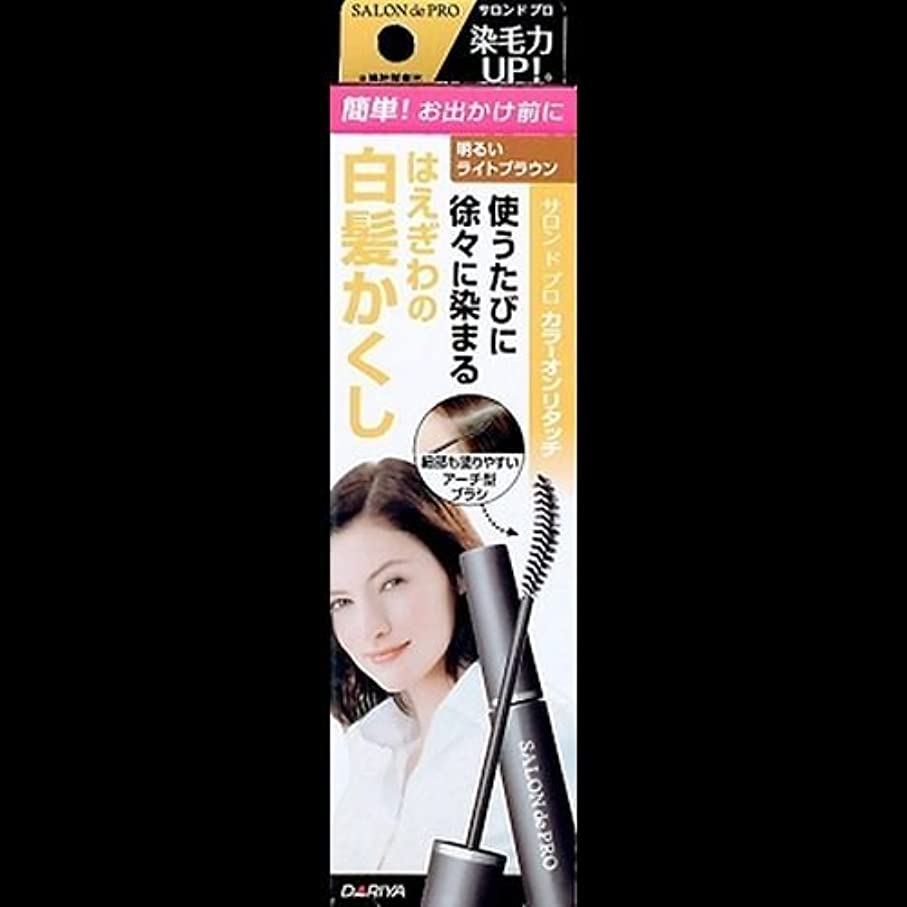 着服スチュワーデスクランプ【まとめ買い】サロンドプロ カラーオンリタッチ 白髪かくしEX 明るいライトブラウン 15ml ×2セット