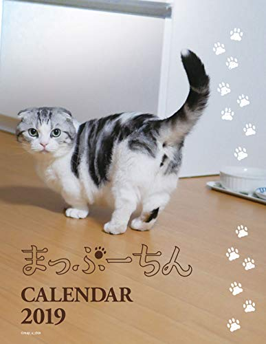 まっぷーちん カレンダー2019 卓上型 ([カレンダー])