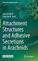 Attachment Structures and Adhesive Secretions in Arachnids (Biologically-Inspired Systems)