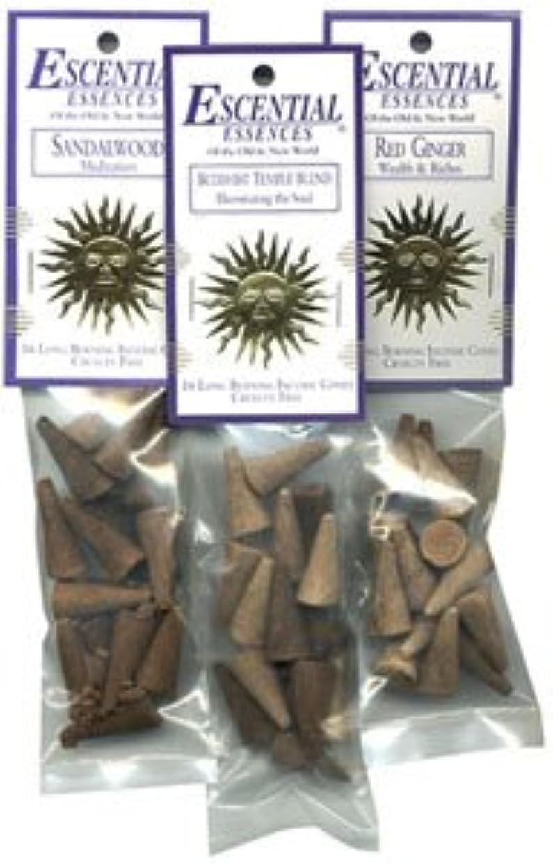 みすぼらしい裏切りシソーラスDragon 's Blood – Escential Essences Cone Incense – 16円錐パッケージ