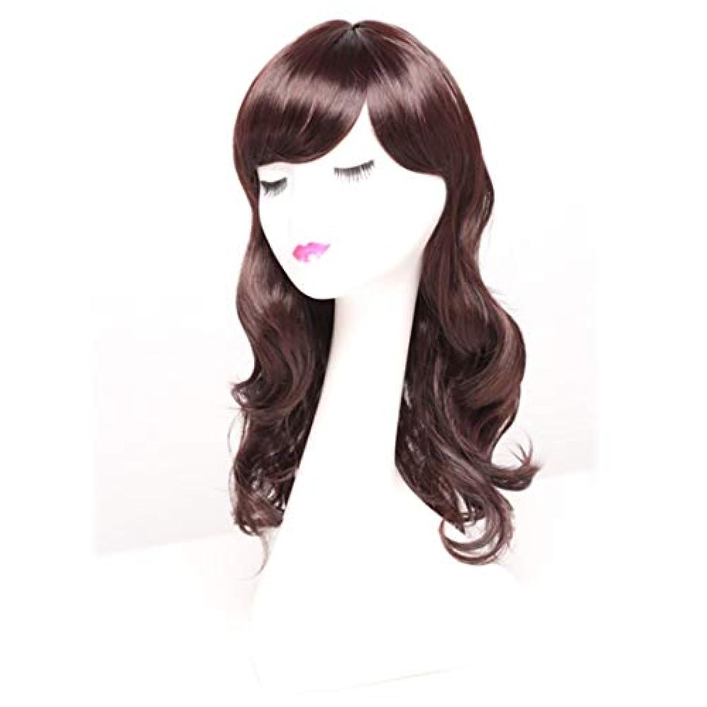 邪魔する大通りシールドKerwinner 女性のための長い巻き毛のかつらかつらかつらと人工的な毛髪のかつら本物の髪として自然なかつら