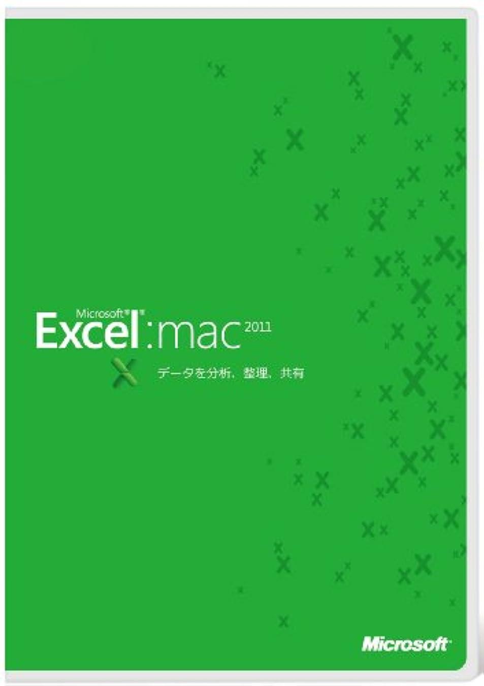 鮮やかな光沢少なくとも【旧商品】Microsoft Excel for Mac 2011 [パッケージ]