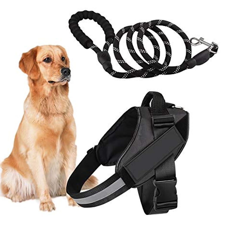 等々ヒョウパキスタンDog Harness and Dog Leash Set No Pull Pet Harness Adjustable Vest Harness Dog Leash Puppy Harness Night-light Dog Pet Harness with Soft Mesh Nylon Dog Chest Harness for Small Medium Large Dogs Cat (L) 141[並行輸入]