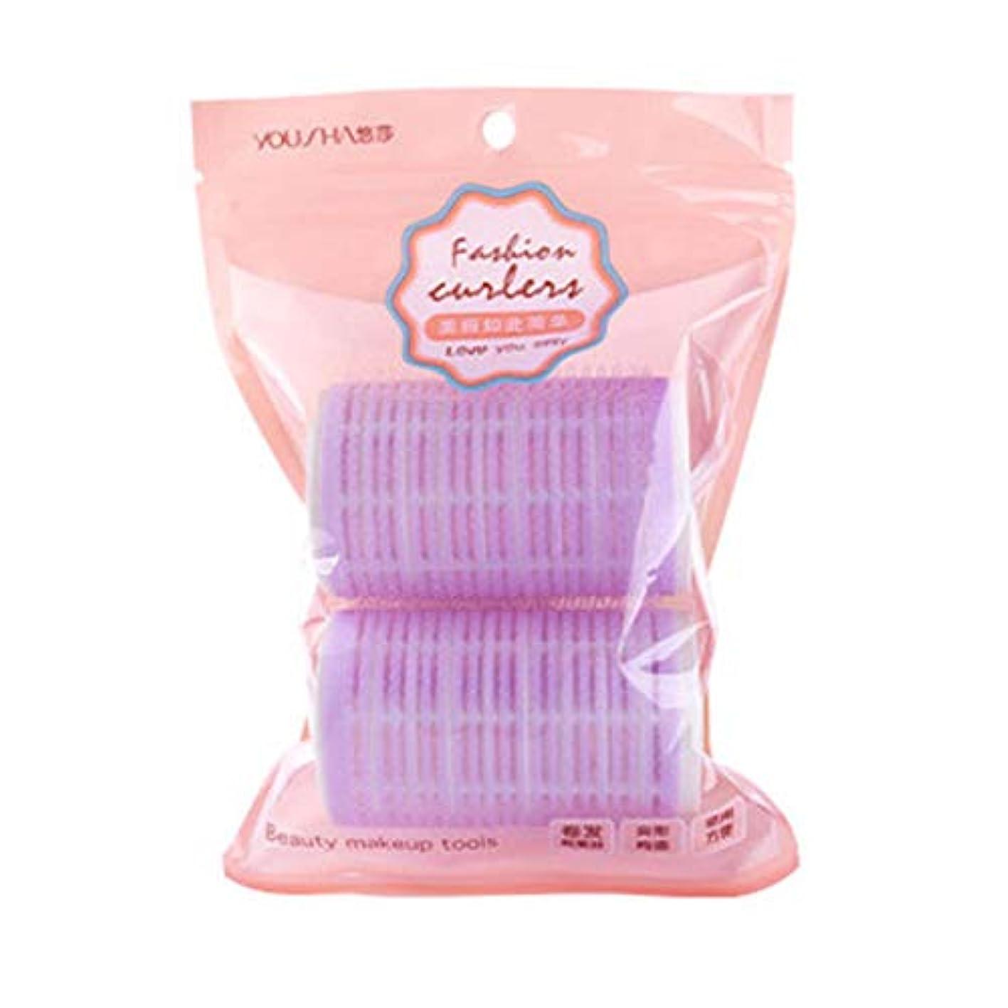 結婚かび臭い隣人Davine 2パックの前髪用カーラーマジックテープカーラー (Purple)