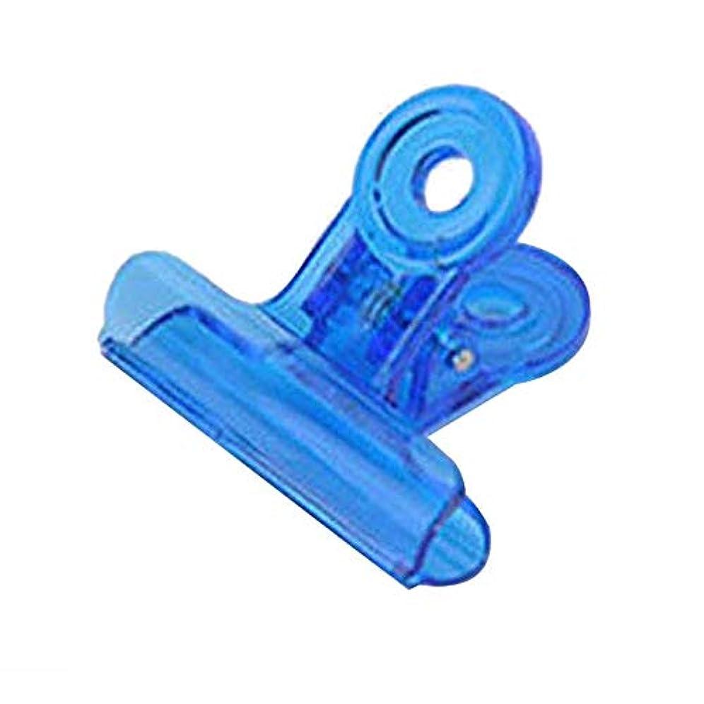 平行定常時期尚早CUHAWUDBA カーブネイルピンチクリップツール多機能プラスチック爪 ランダムカラー(ブルー)