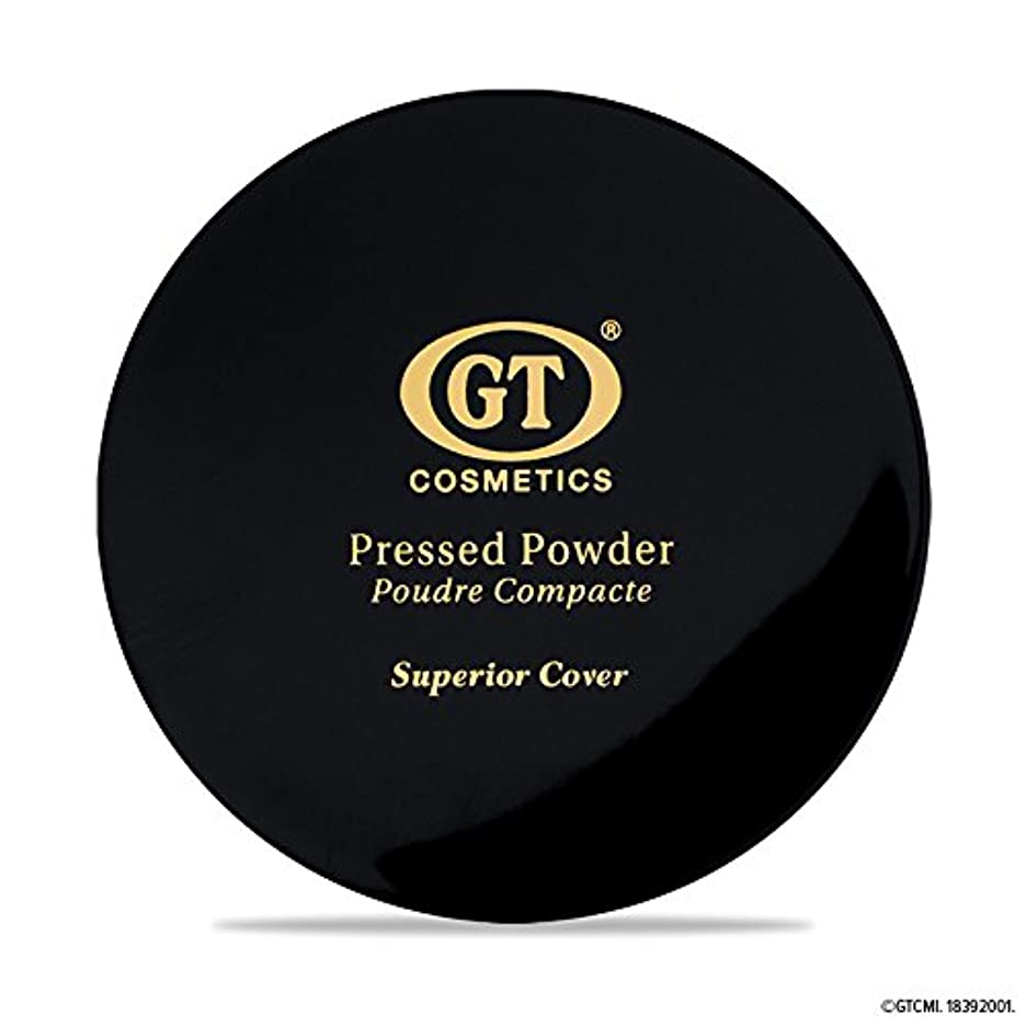 個人トリップミントGTpressed powder ナチュラルベージュ SPF20 正規輸入代理店 日本初上陸 コスメティック オーガニック ファンデーション