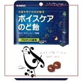カンロ 90g ボイスケアのど飴 ×48個【1k】