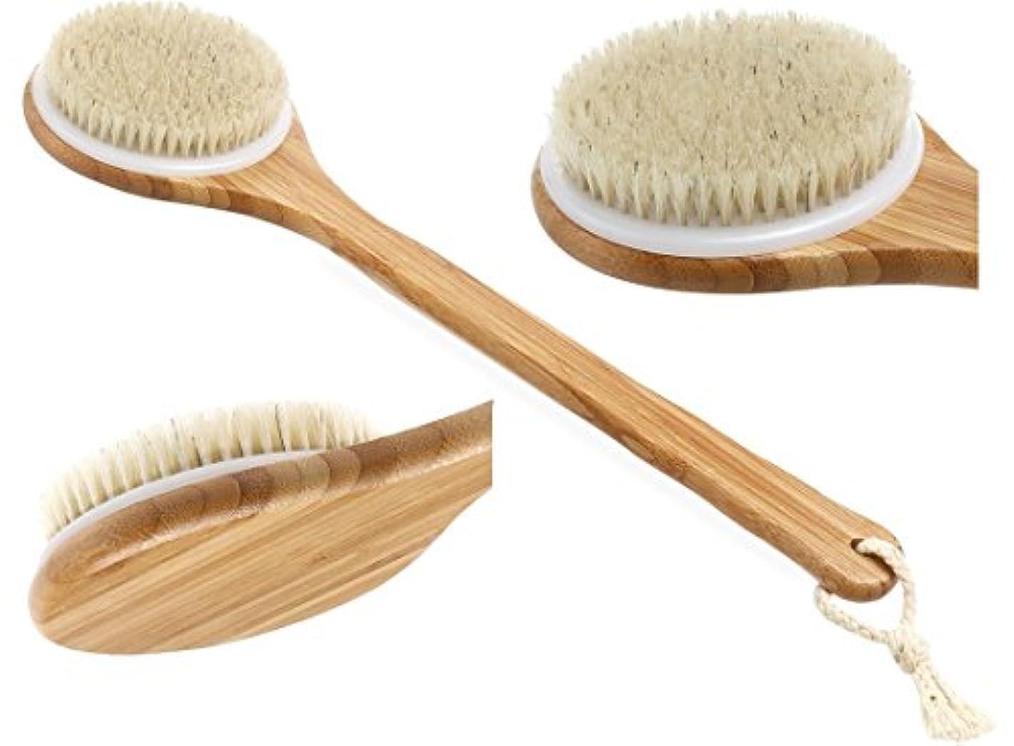 保全意図技術Dizzy 天然豚毛 ボディブラシ かため お風呂 背中 ブラシ 長柄