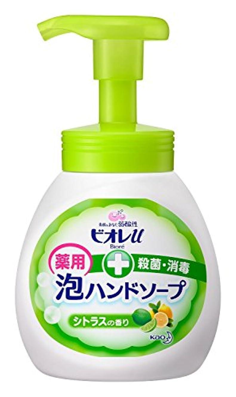 含める石油慣れている【花王】ビオレu泡ハンドソープ シトラス ポンプ 250ml ×5個セット