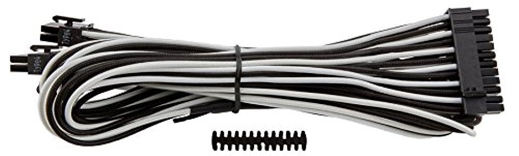 いらいらさせる荒涼とした裏切りCorsair Premium Individually Sleeved ATX 24-Pin Cable WHITE BLACK PS710 CP-8920163