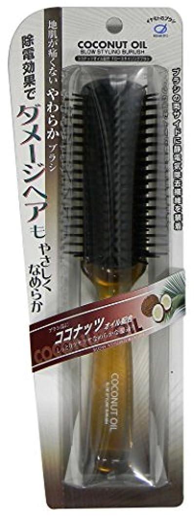 フロントピニオンに渡ってイケモトココナッツオイル配合スタイリングブラシ CC1060