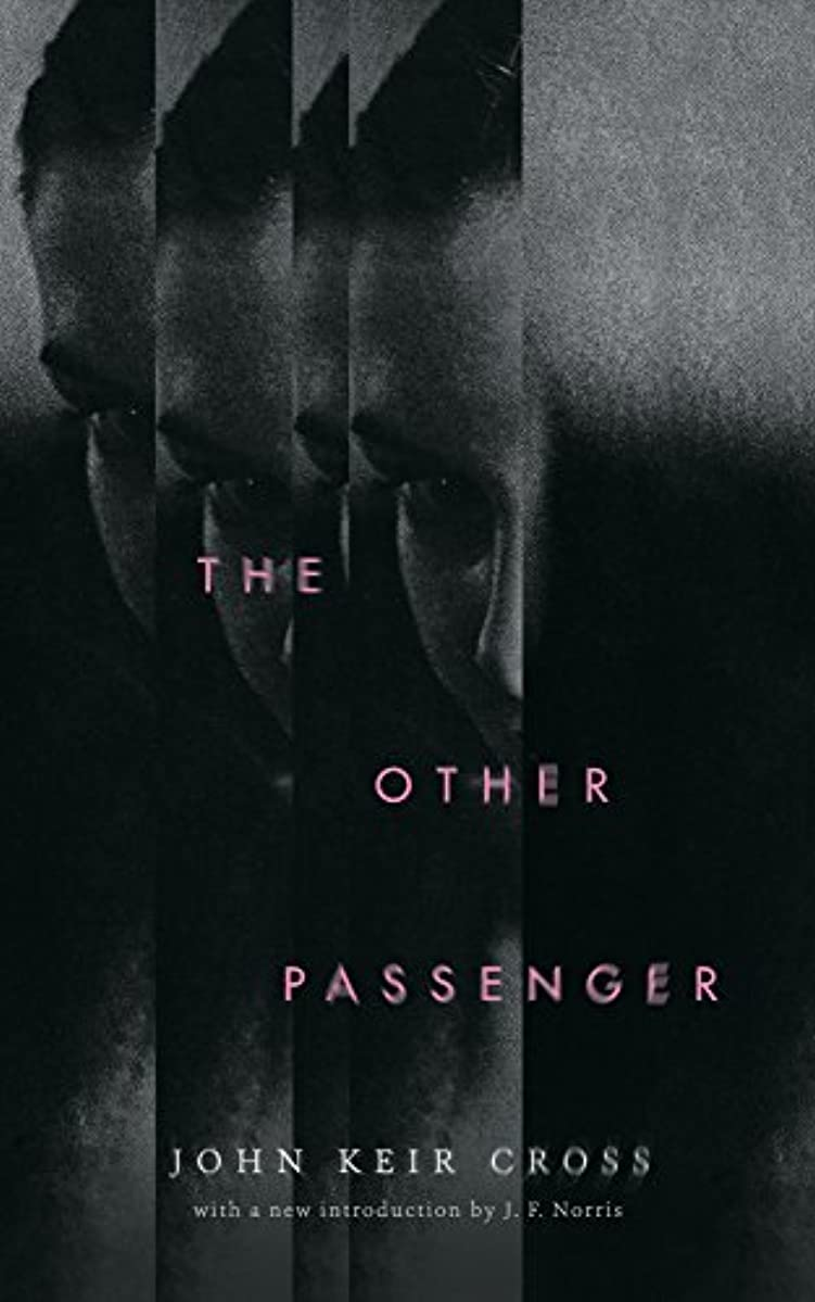 委員会ミニ適応するThe Other Passenger (English Edition)