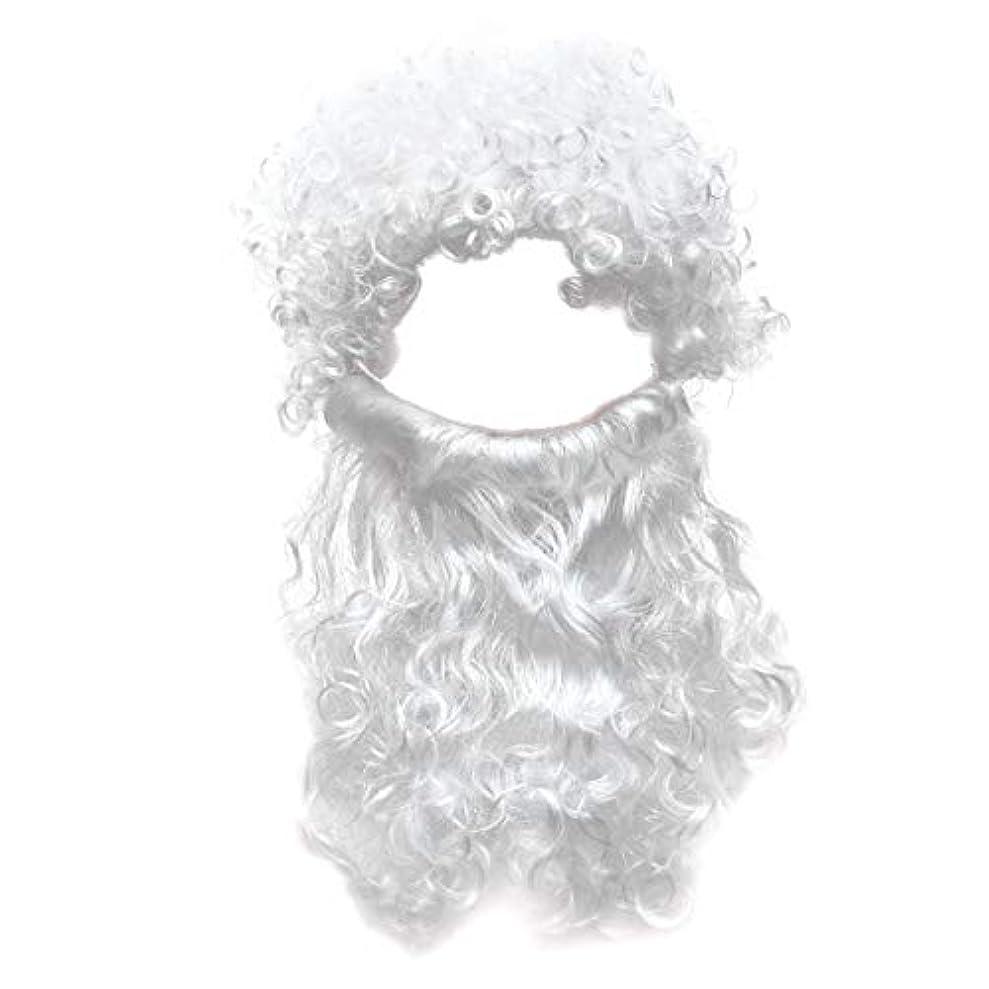 非アクティブ伝導不安定なBeaupretty 2本の男性のハロウィンコスチュームコスプレ波状のイエスの髪の毛の髪セットひげセットホワイト