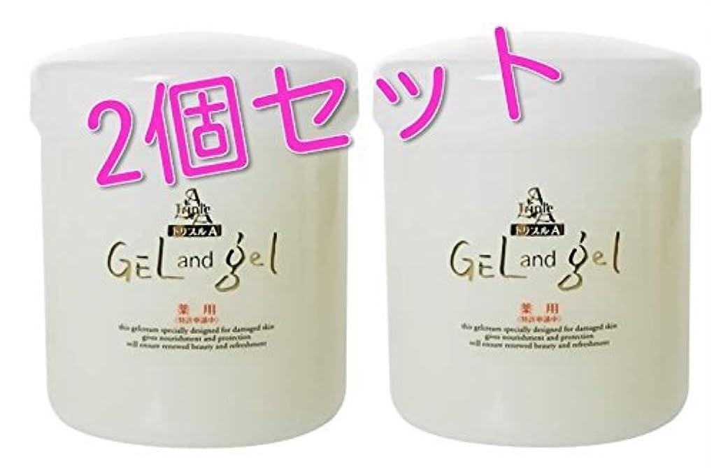 反逆者吸収する消費者ゲルアンドゲル (ゲル&ゲル) クリーム 500g 医薬部外品 2個セット