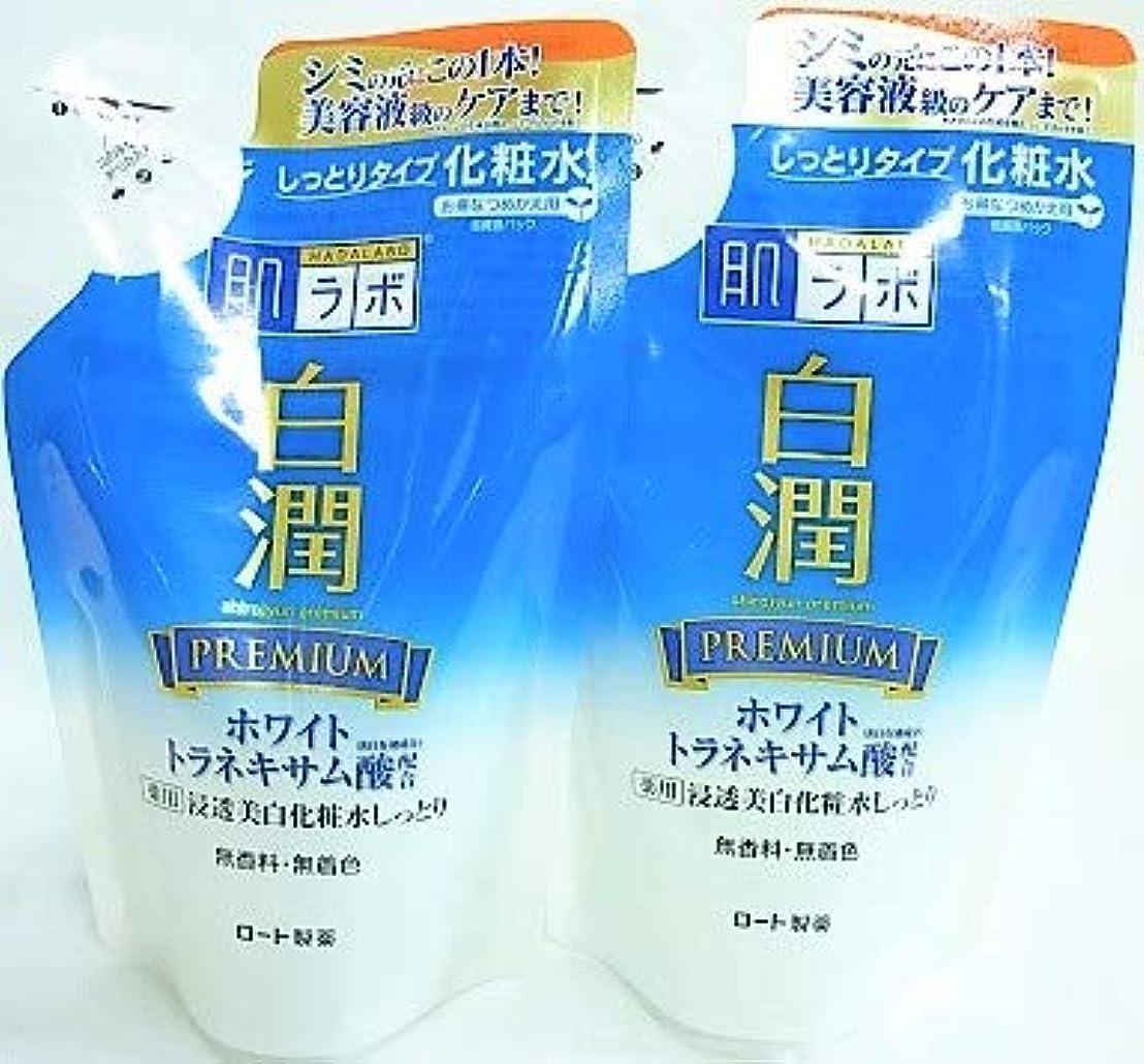 ラフ睡眠列挙する増幅器[2個セット]肌ラボ 白潤プレミアム 薬用浸透美白化粧水しっとり 詰替用 170mL入り×2個