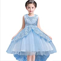 Girls Princess Lace Flower Dress Kids Party Gowns Dress Birthday Party Wedding Dress 3-13 Years Old