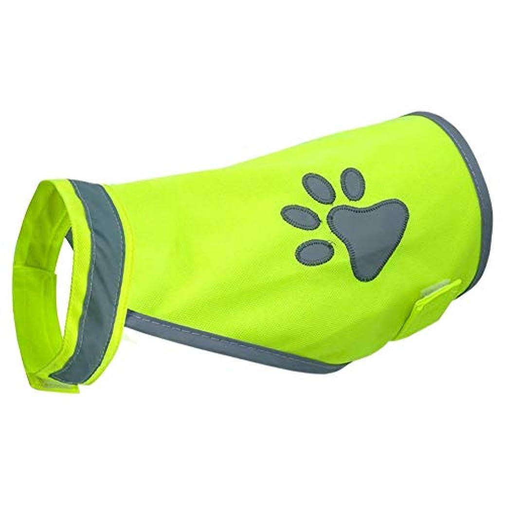 定常ポンペイなめらか犬ベストエクササイズハイキング反射ウォーキング子犬ペット服ファッションカジュアルコスチュームナイト高視認性安全屋外(XL)