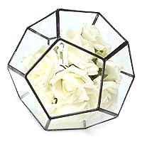 クインウィンド 不規則なガラス幾何学的テラリウムボックスフラワーポット DIY 卓上多肉植物プランター -