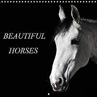 BEAUTIFUL HORSES 2020: Beautiful and elegant horse portraits with intense expression (Calvendo Animals)