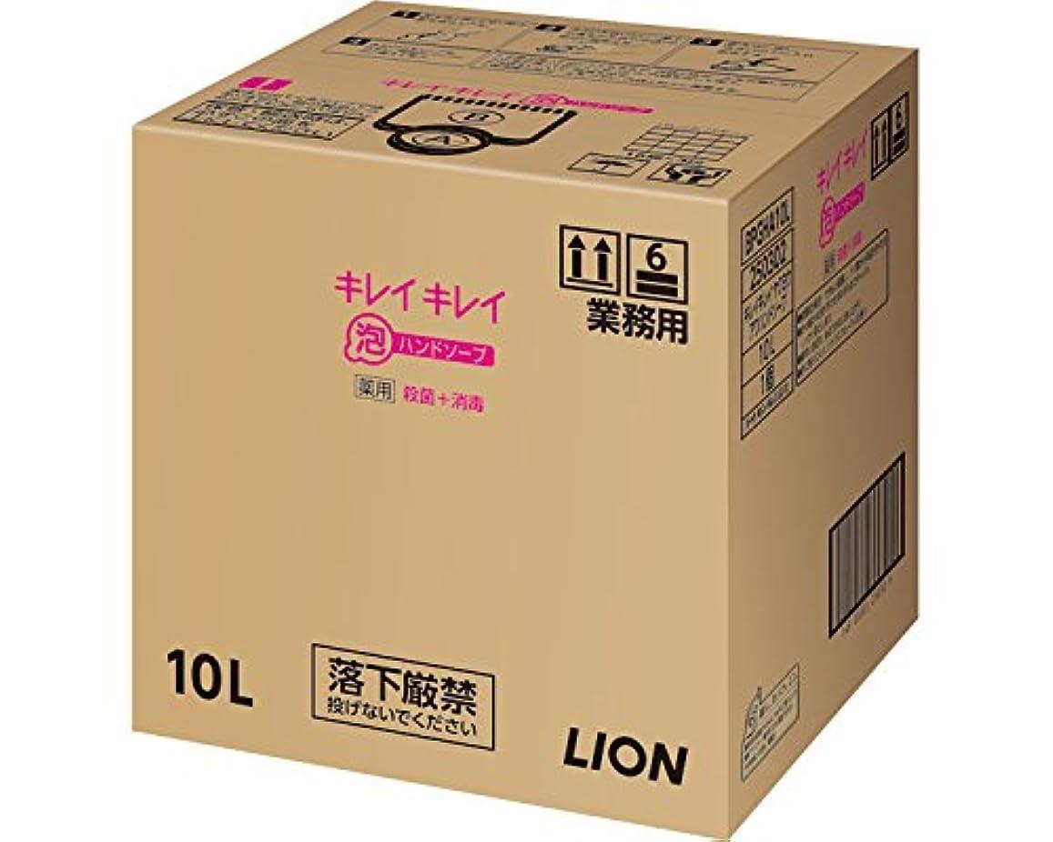 調停する摂氏度ハプニングキレイキレイ薬用泡ハンドソープ 10L (ライオンハイジーン) (清拭小物)