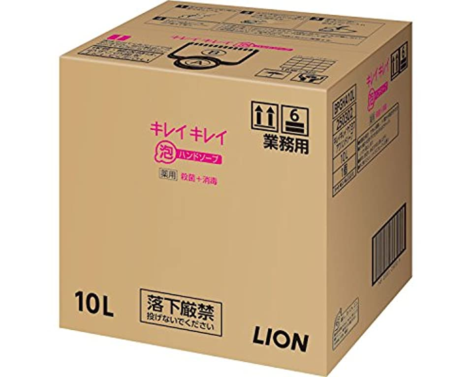 縁石謙虚遺産キレイキレイ薬用泡ハンドソープ 10L (ライオンハイジーン) (清拭小物)