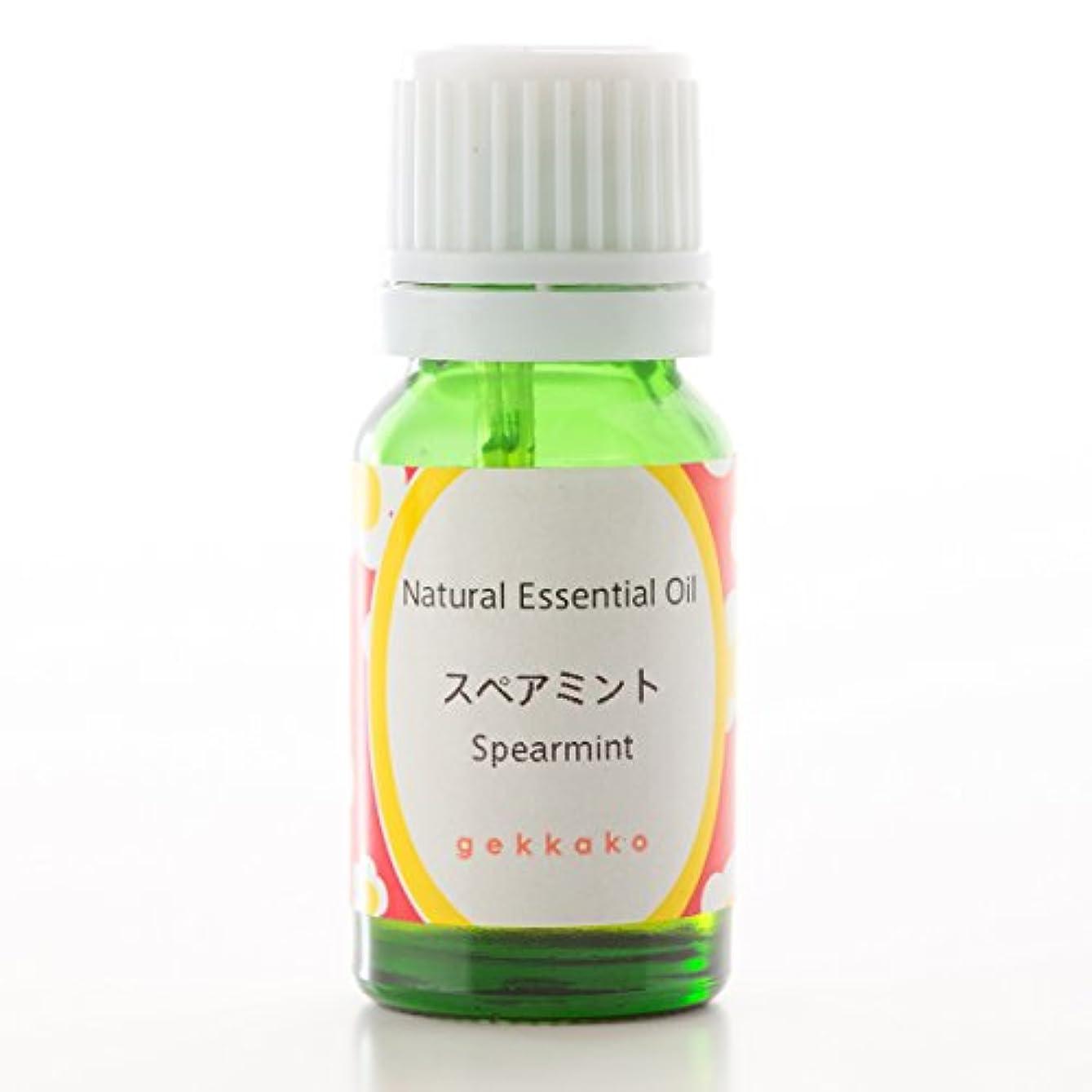 <月下香>エッセンシャルオイル/アロマ/スペアミント【100ml】 (5ml)